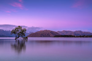 Calm lake views